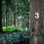 Tree-Premax-3