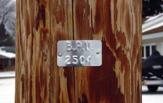 Premax Custom Tags - Consecutive 2